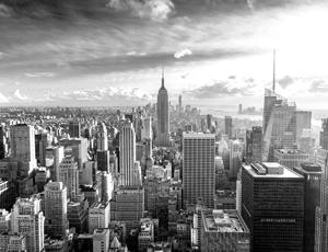 EFAP New York