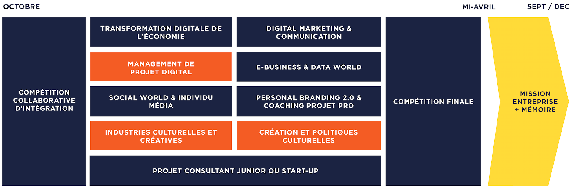 Programme Master Marketing Digital & Art Culture - MBA EFAP