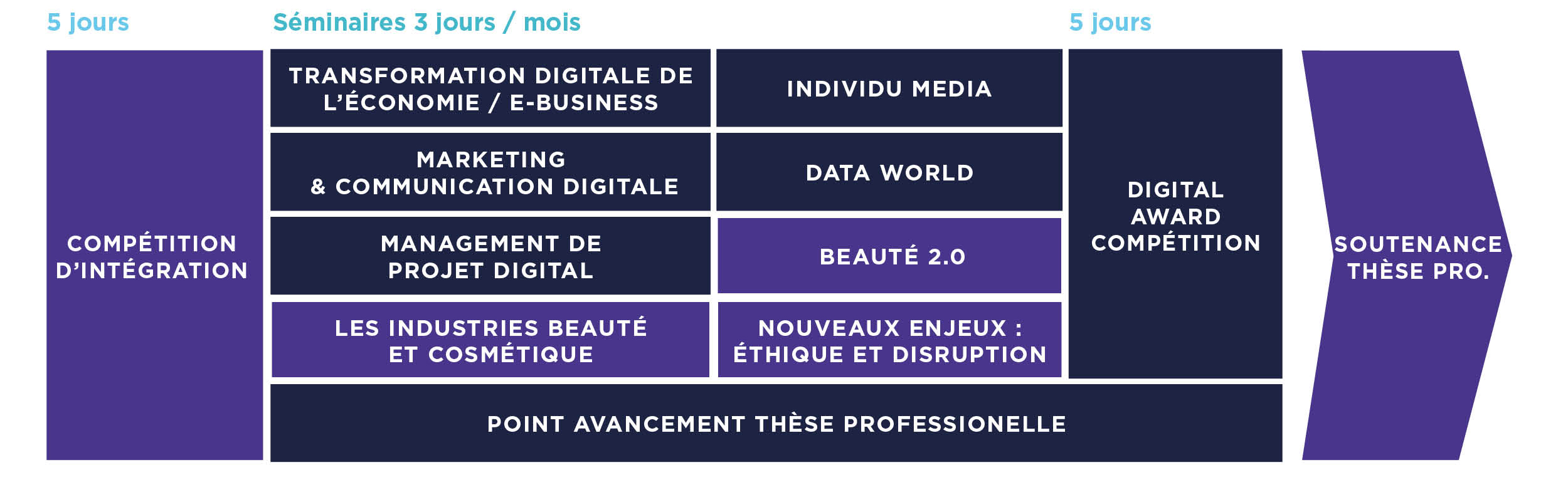 Master Marketing Digital de la Beauté - MBA Communication EFAP