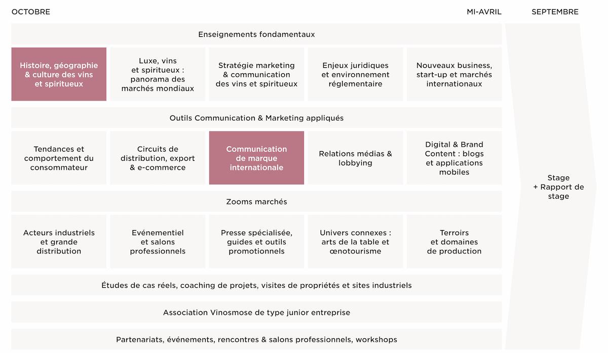 Programme Master Communication & Marketing des Vins - MBA EFAP